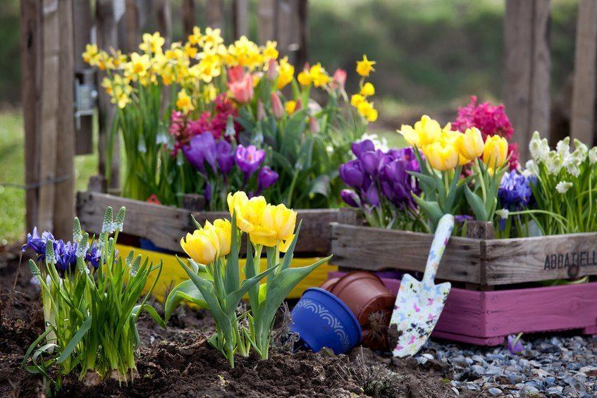 Весняні знижки до -10%